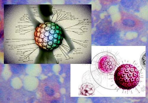 最常见的遗传病_HPV病毒与皮肤癌有关-遗传病生育网